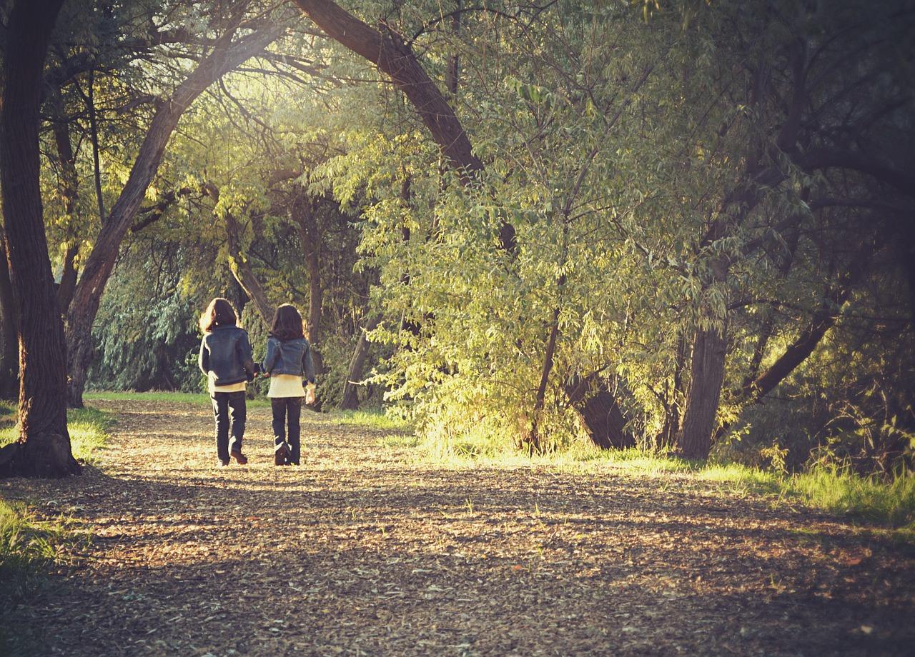 Promenade à pied en foret : deux personnes