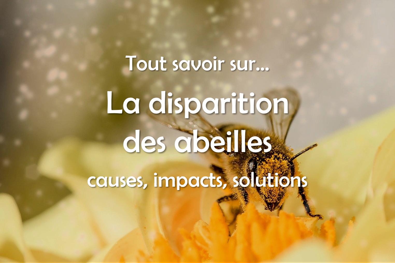 Disparition des abeilles : causes, conséquences écologiques et solutions