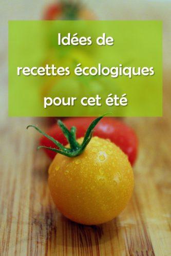 Tomates : idées de recettes écologiques pour cet été