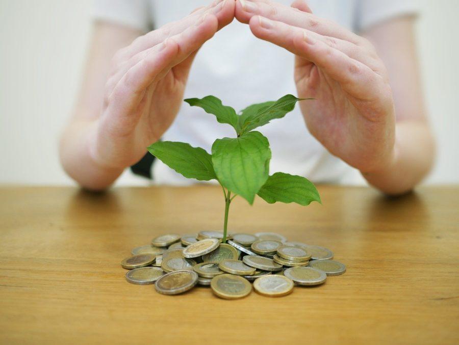 Pile d'argent écoresponsable, une plante pousse dessus