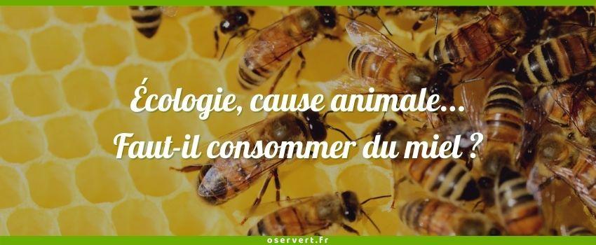 Faut-il consommer du miel pour l'écologie et la cause animale ?