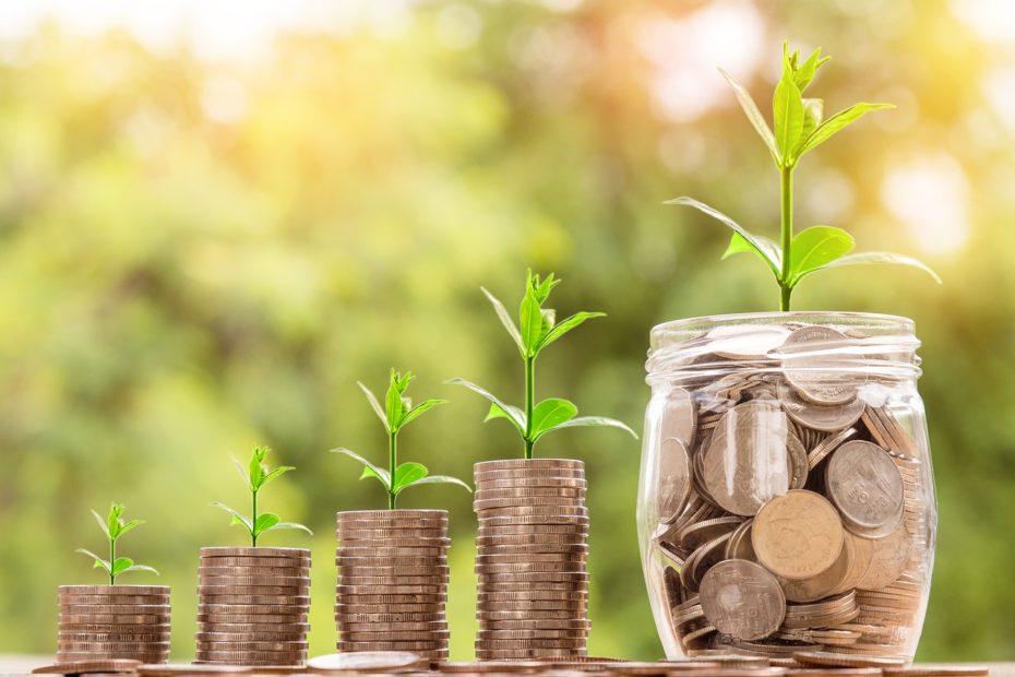 Des piles de pièces de plus en plus grandes, avec une plante pour montrer la finance écoresponsable